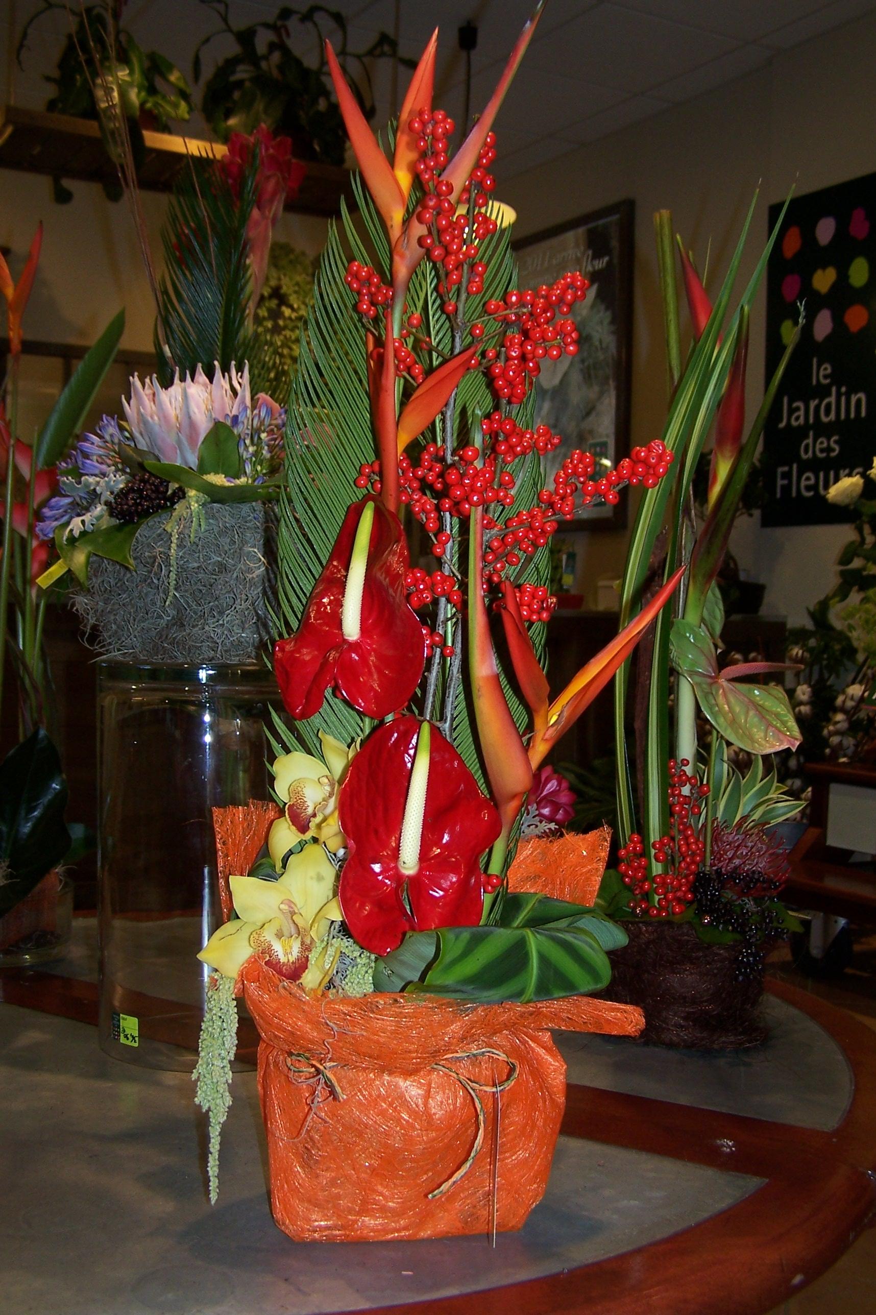 Compositions le jardin des fleurs de saint malo for Le jardin des fleurs